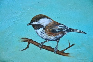 chickadee detail 1